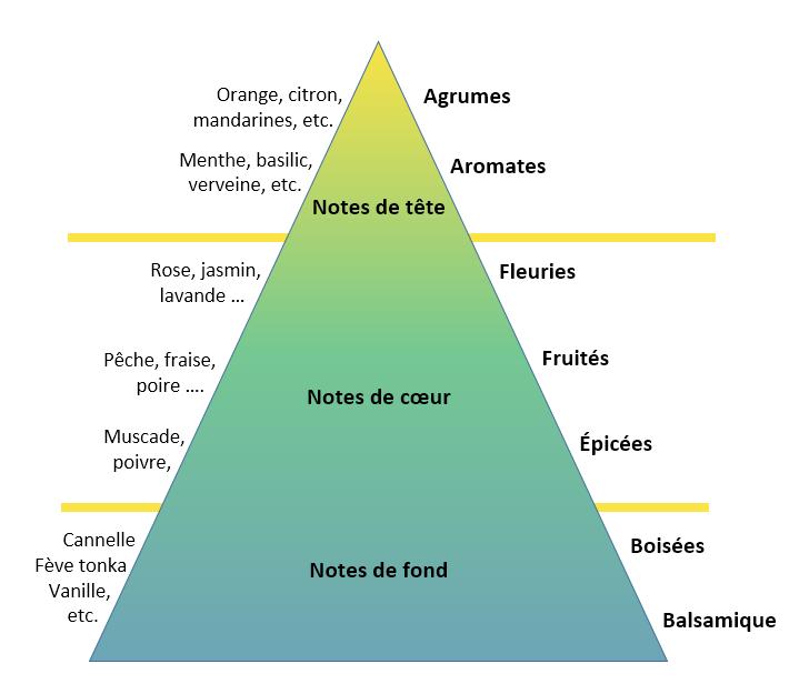 La pyramide des odeurs